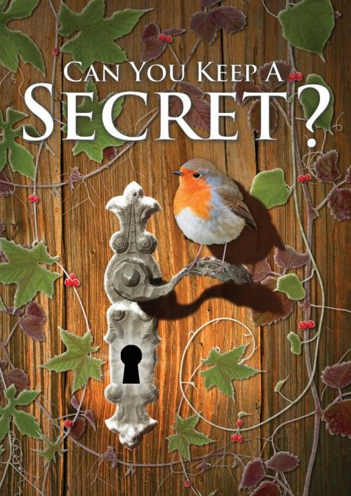 The Robin Powerful Symbol From My Favourite Book The Secret Garden