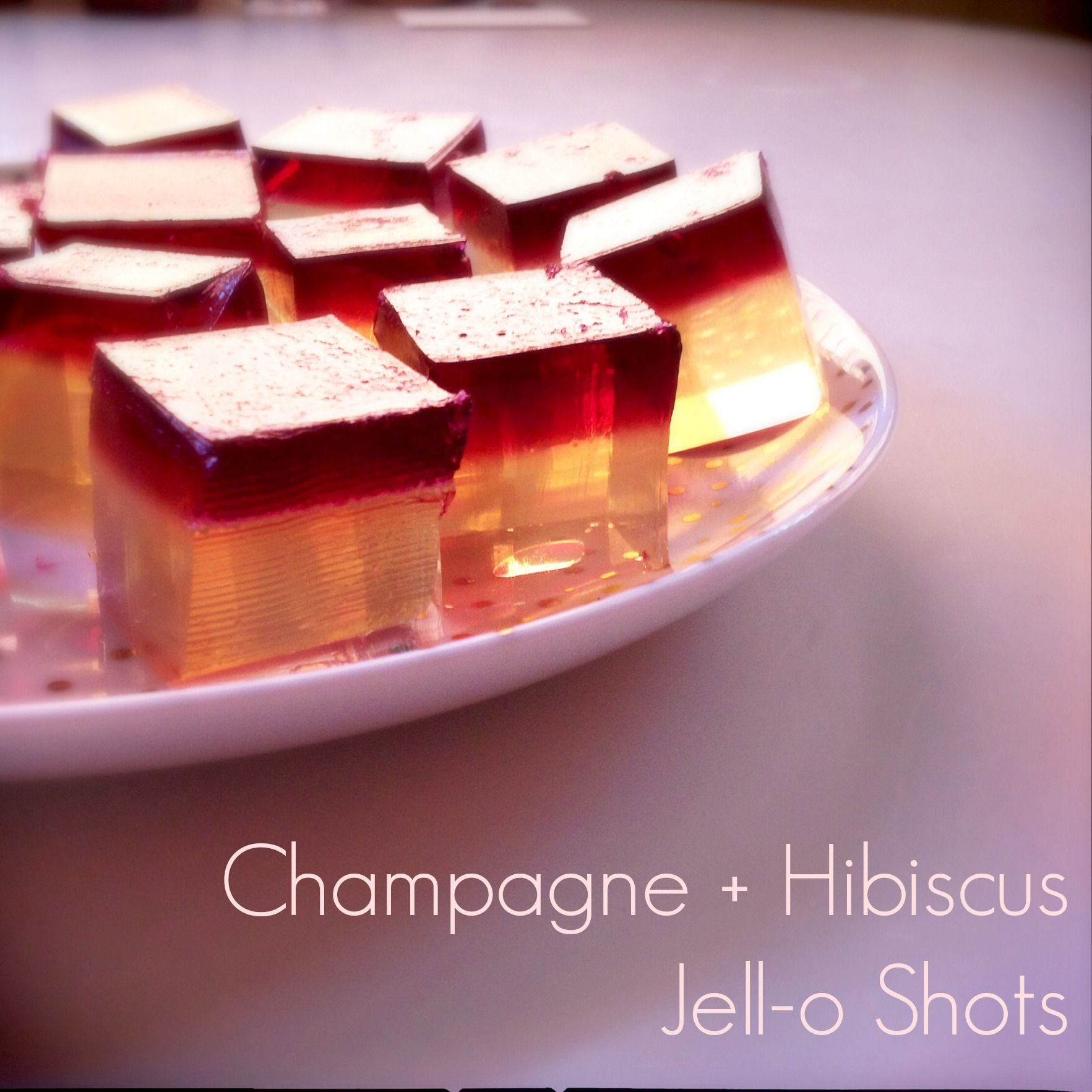 Champagne hibiscus jell o shots featuring hibiscus flowers in champagne hibiscus jell o shots featuring hibiscus flowers in syrup izmirmasajfo