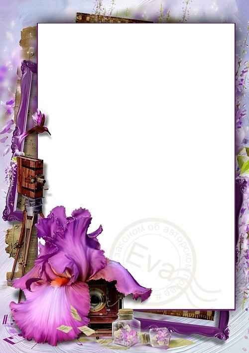 Pin By Loveframes On Flower Photo Frame Download Pinterest Free
