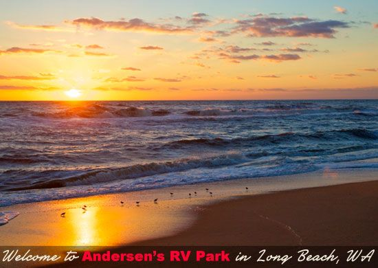 Long Beach Washington Beach | Andersens Rv Park Long Beach Wa