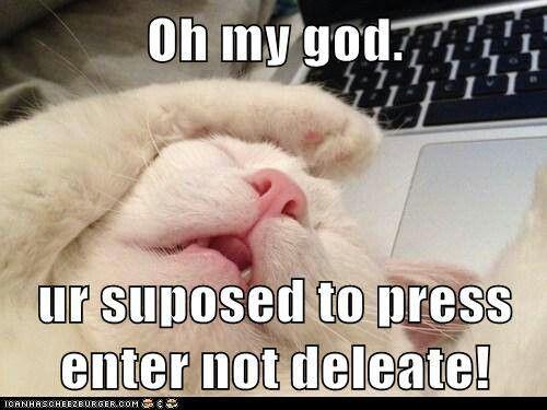 Not Delete