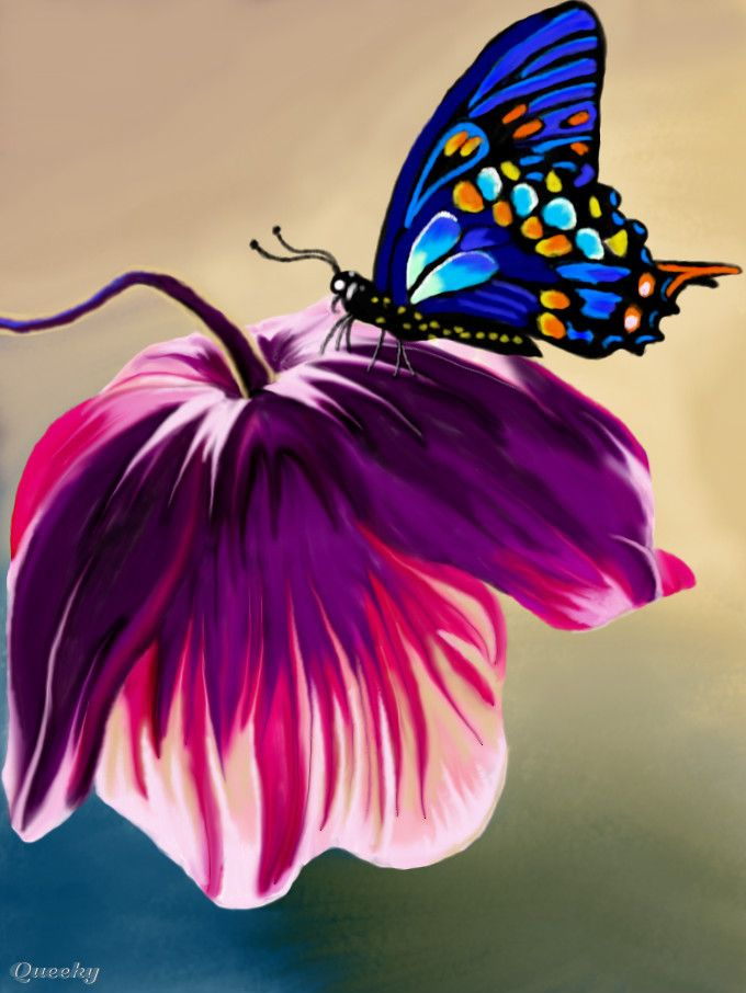 Pink Flower and Butterfly ← a plants Speedpaint drawing by Kutedymples - Queeky - draw & paint
