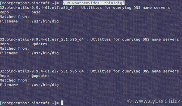 Find out which package provides dig command on CentOS Linux