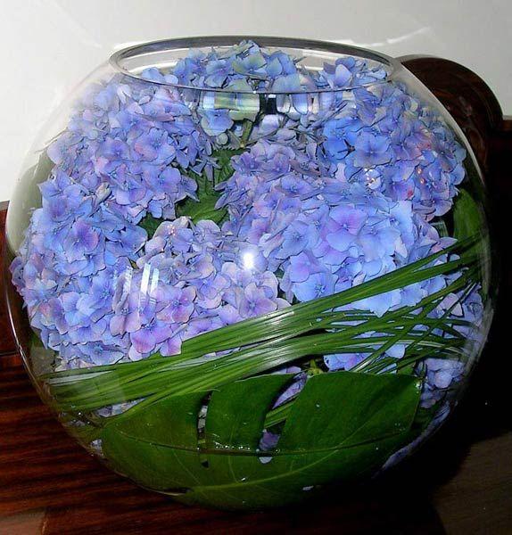 Sweet Hydrangea Centerpiece with Monstera leaf.