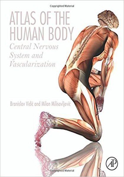 Atlas of the Human Body  Atlas of the Human Body eBook PDF