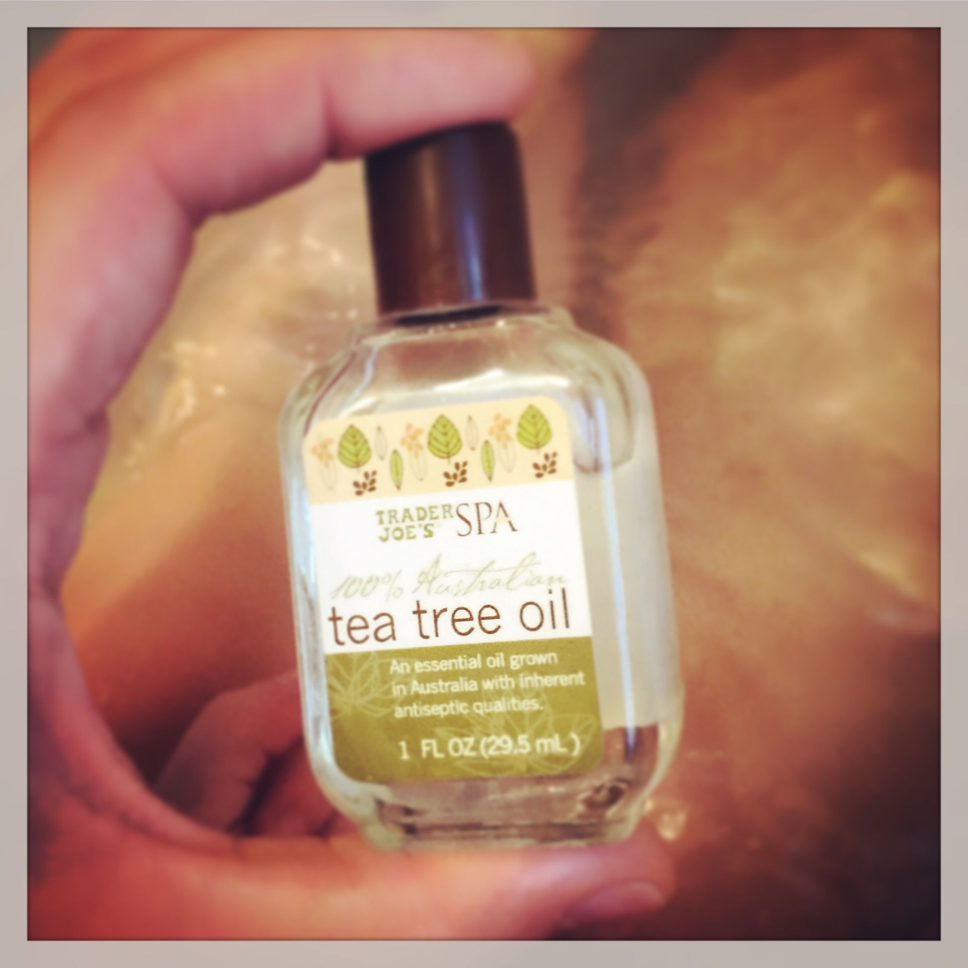 Tea Tree oil has many benefits for the body and skin