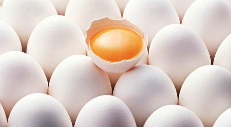 Ruyada Yumurta Gormek Nutritional Value Of Eggs Carbs Nutrition Recipes