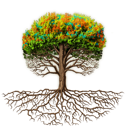 Why We Exist   Garden trees, Root growth, Team development