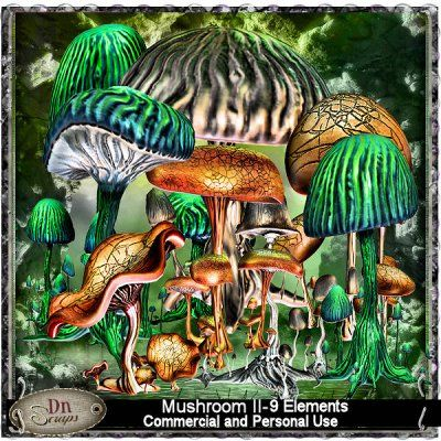 Mushrooms II (Grabbag)