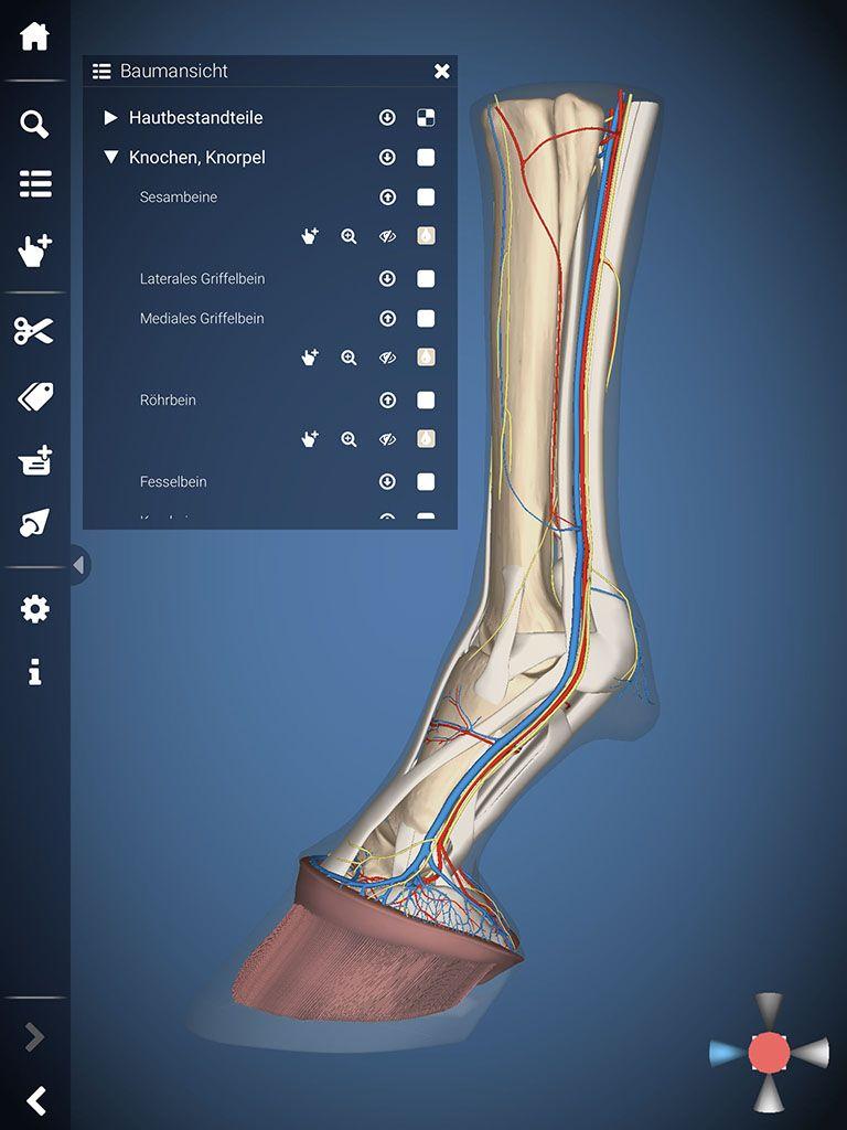 3D-Explorer Software und Apps für die Life Sciences | Effigos ...