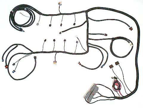LS6 Wiring, LS6 engine harness from Speed Scene Wiring