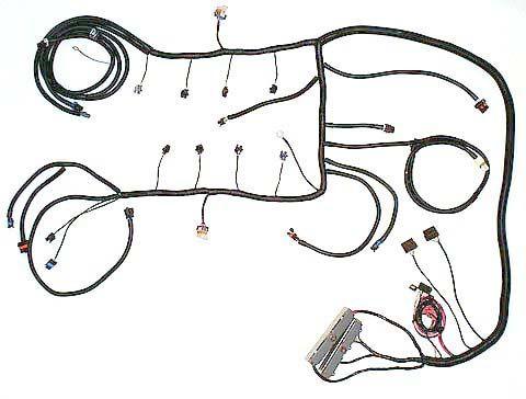 LS6 Wiring LS6 engine harness from Speed Scene Wiring – Ls6 Wiring Harness