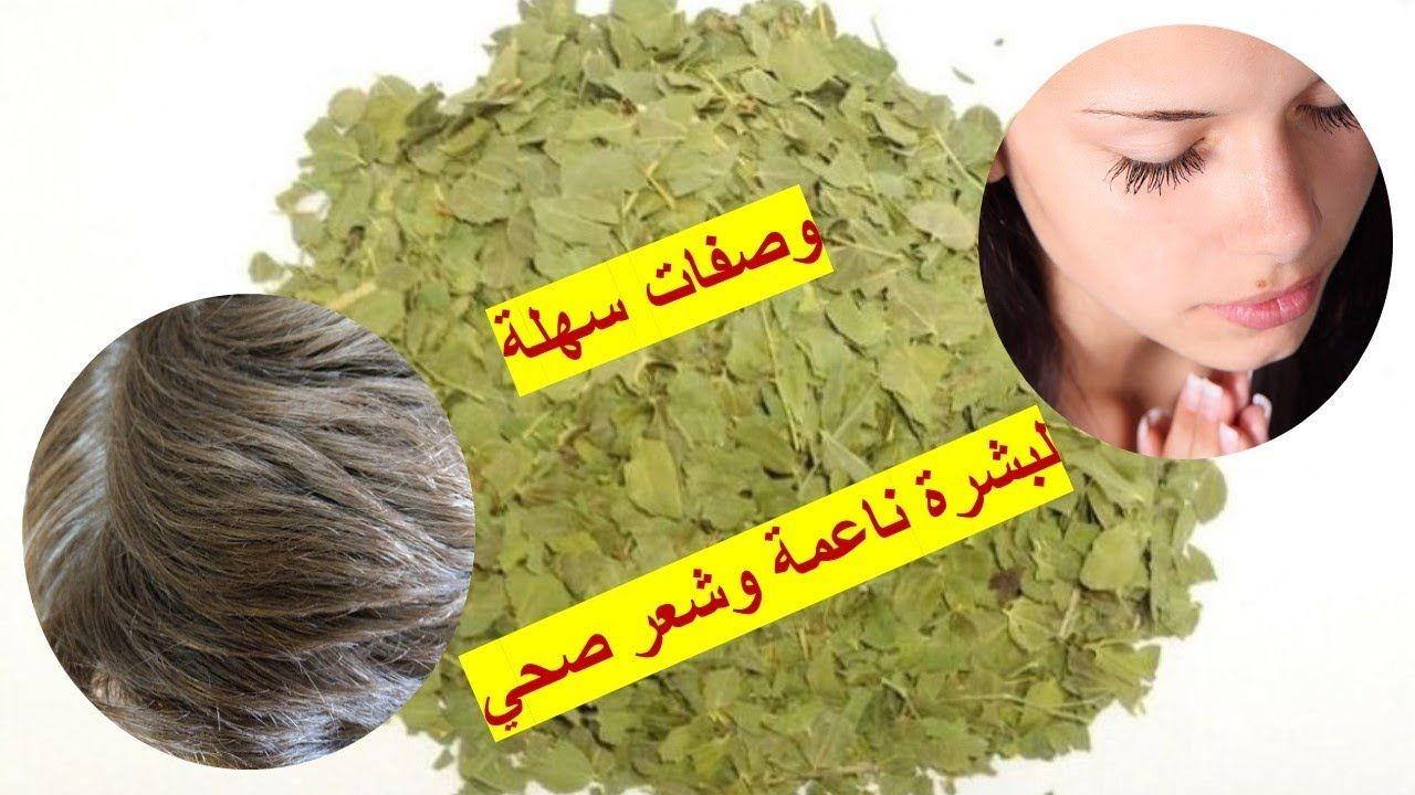 أوراق السدر لبشرة ناعمة وشعر صحي Beauty Benefits Of Sidr Leaf Remedies