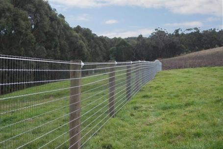 Admiring The Results Horse Fencing Rope Fence Wooden Fence