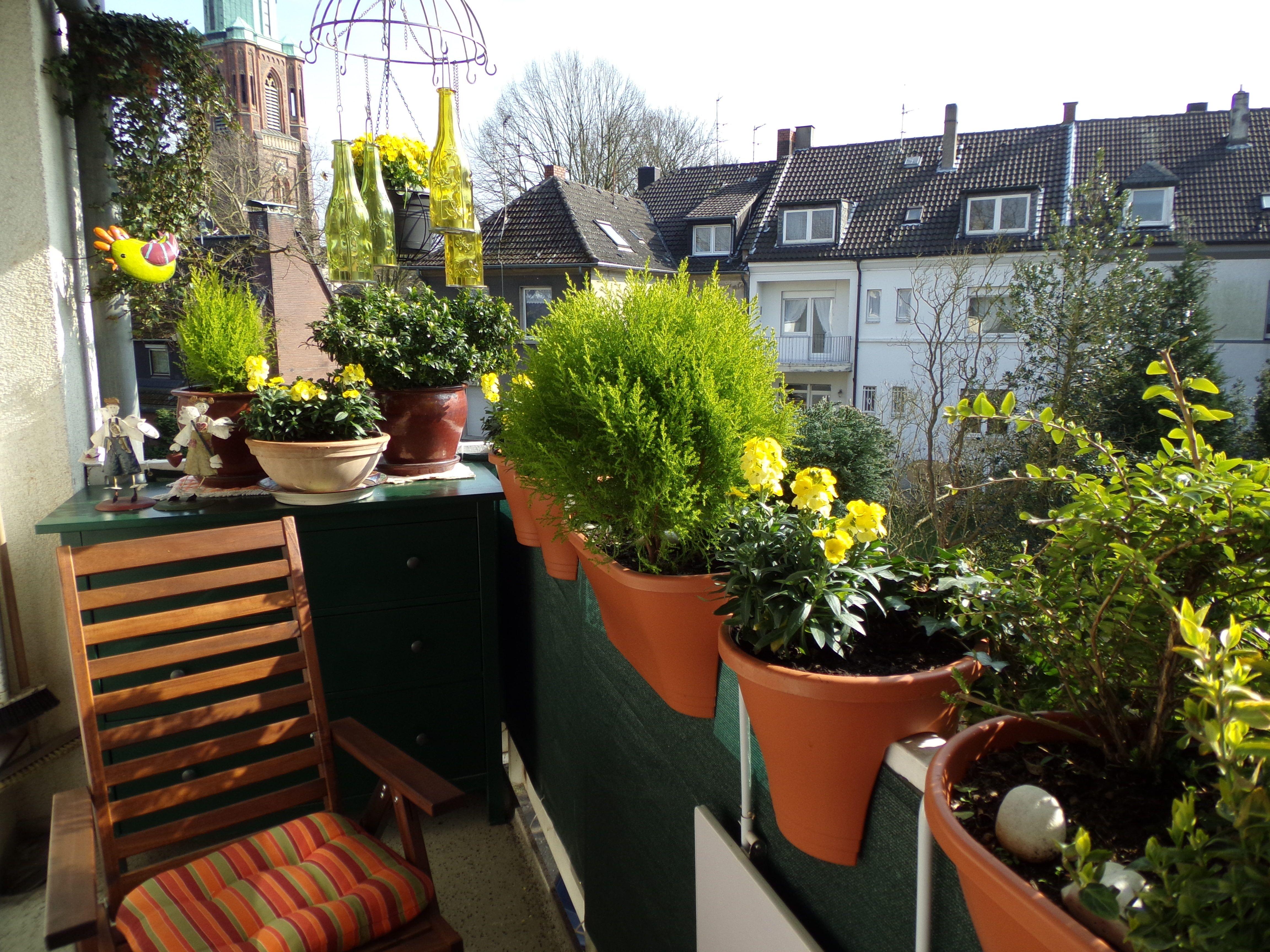 Pierwsze Wiosenne Kwiaty Na Balkon Ekspert Radzi Jakie Wybrac Deccoria Pl Plants Garden Terrace
