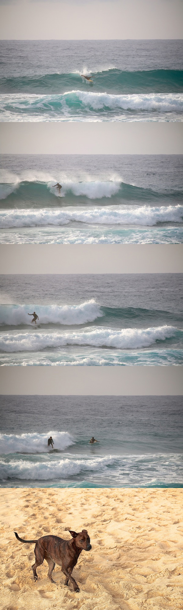 Surf Condition 131202- 8:00 at Sandy Beach, Oahu, Hawaii