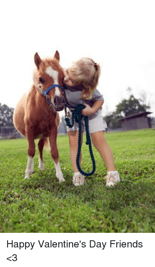 25 Best Memes About Happy Valentines Day Friend Happy Happy Valentines Day Friend Horses Cute Horses Miniature Horse