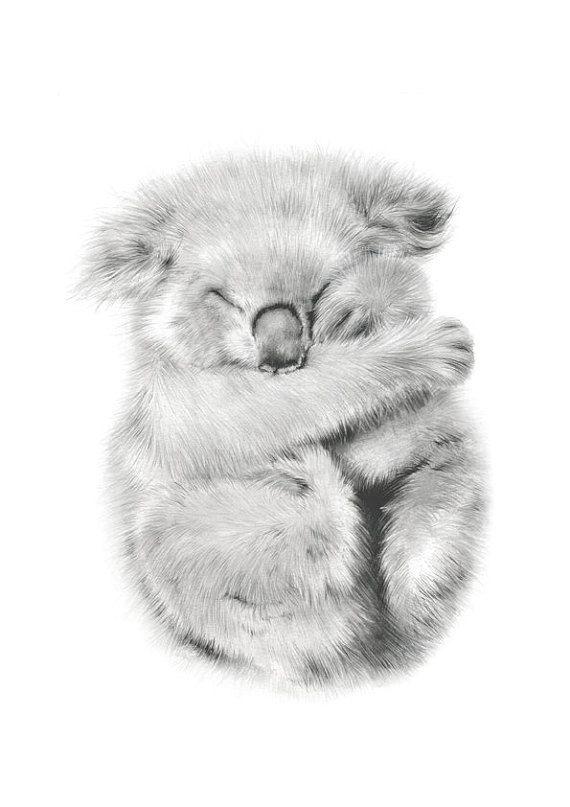 Australian Animal Art Print Koala Bear Nursery Wall For Girls Baby Kids Room Decor