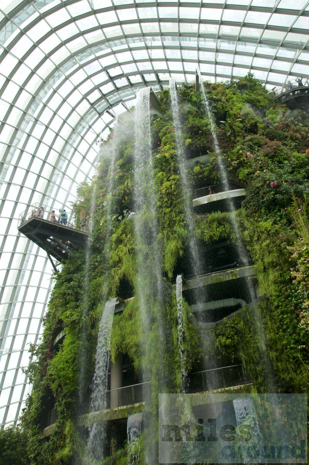 Gardens by the Bay grüne Oase in Singapur (Reisebericht