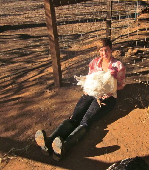 What an internship taught one person about life and animals <3