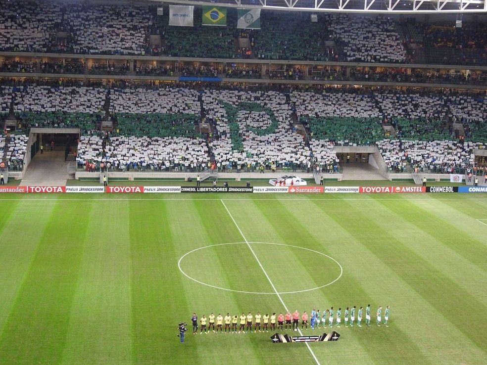 Mosaico do Palmeiras faz sucesso nas redes  veja reações  c3cbab7c7bad7