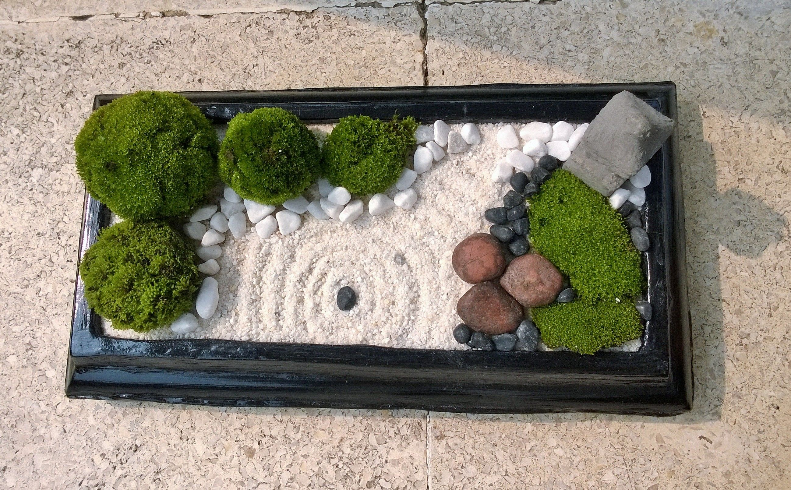 Mini zen garden with nature moss ball white sand black for Jardin zen mini