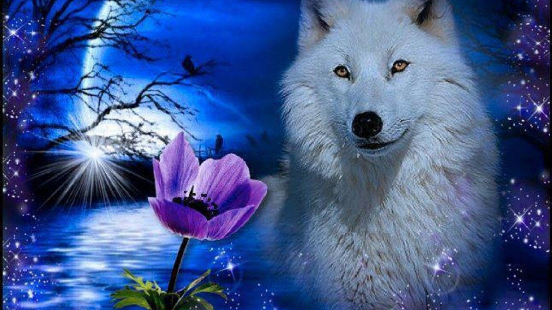 Blue Moon Wolf Wallpapers High Quality Resolution with ...