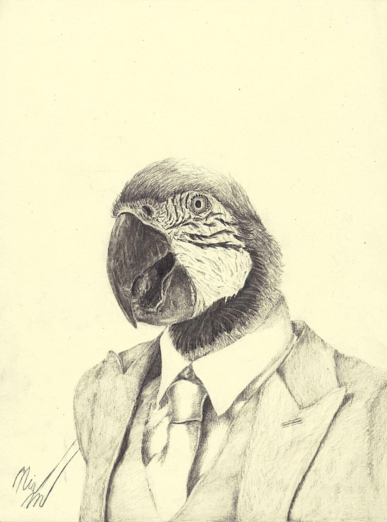 parrotman