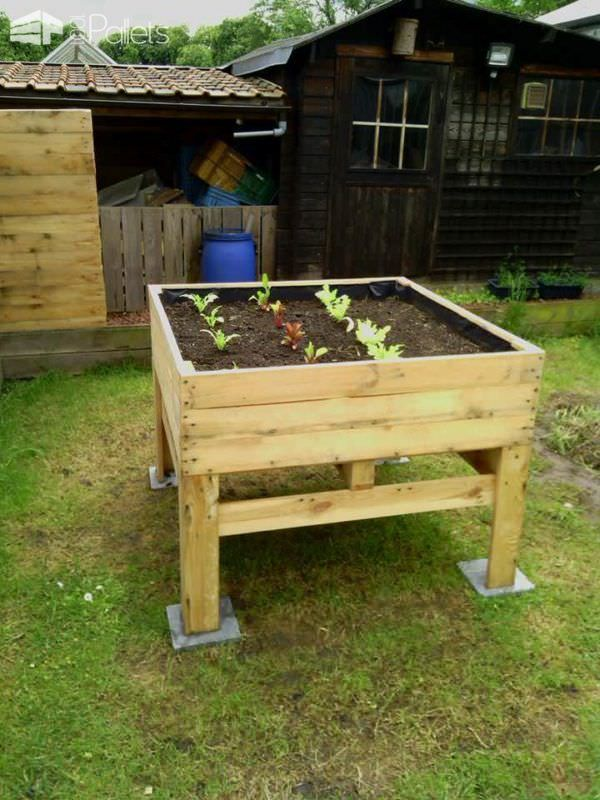 raised vegetable planter potager sur lev pallets. Black Bedroom Furniture Sets. Home Design Ideas