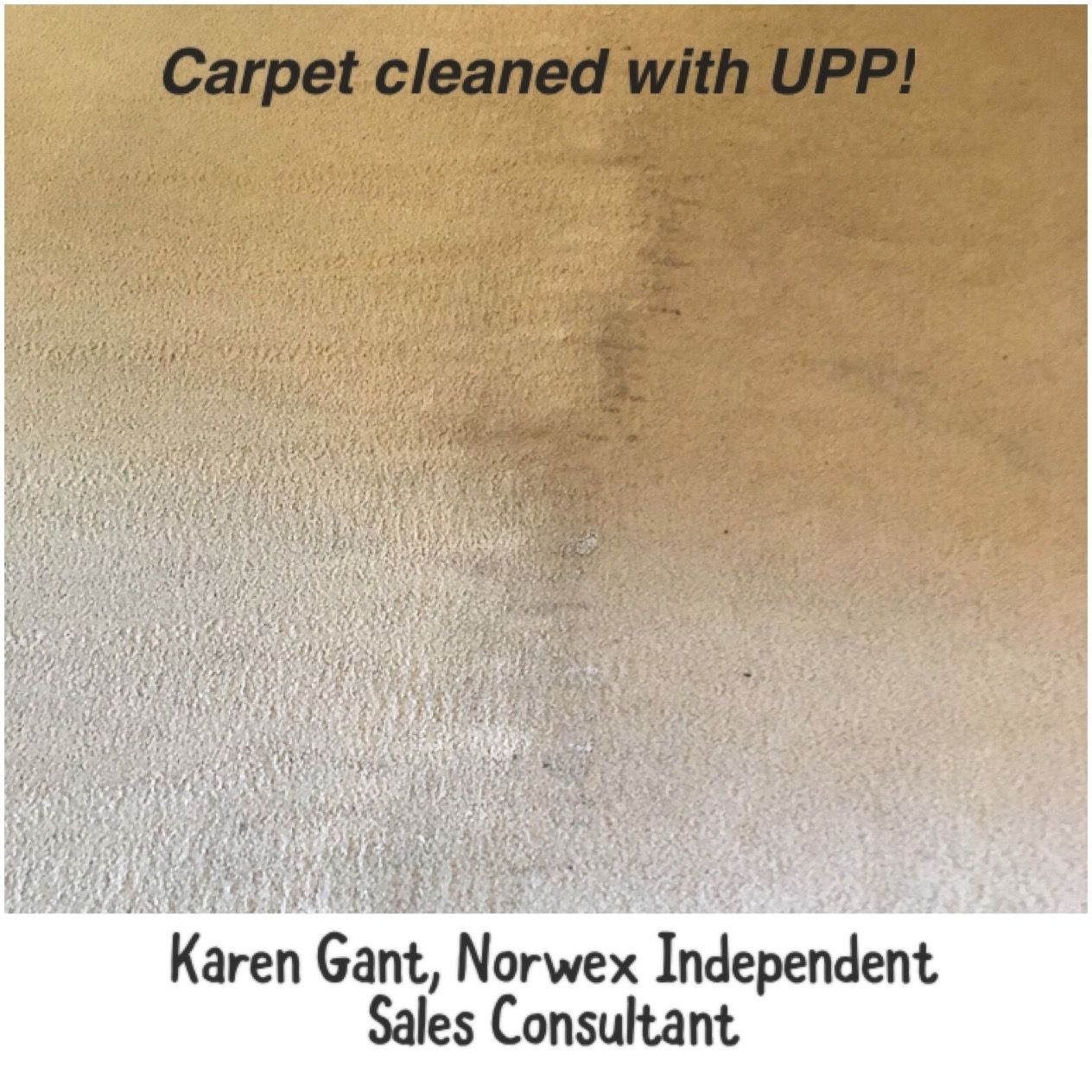 How To Use Norwex Upp In Carpet Cleaner Www Resnooze Com
