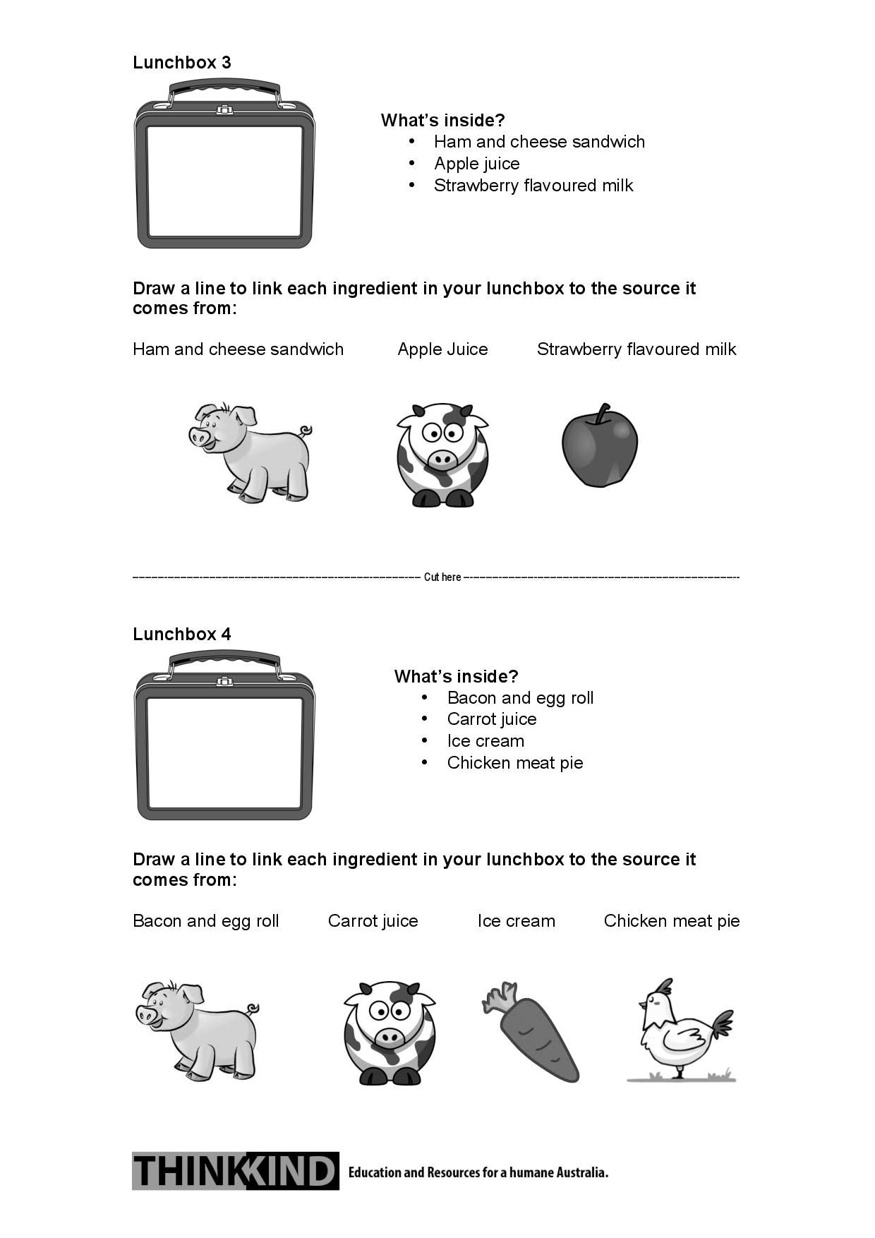 2 2 What S In Your Lunchbox Paddock To Plate Worksheet