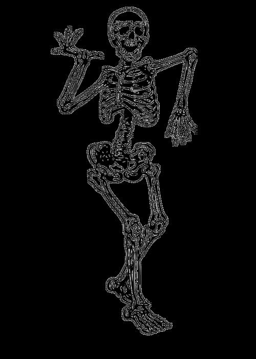 Skeleton Happy Dancing Sticker By Original Dna Plus White 3 X3 Skeleton Drawings Skeleton Art Skeleton Tattoos