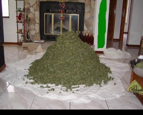 Pounds Of Dank