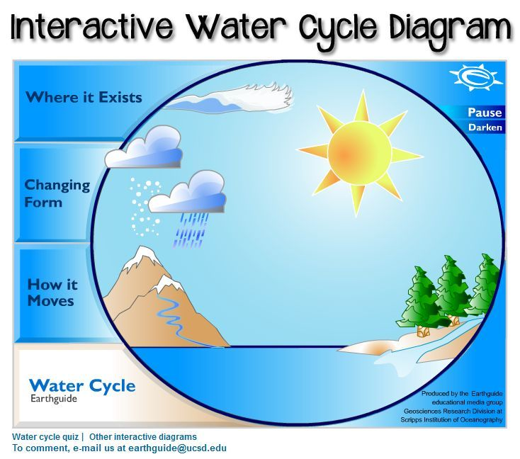 This diagram of the water cycle is interactive Click parts for animation and information