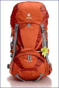 eb1fe716eb Deuter ACT Lite Backpacks 35L