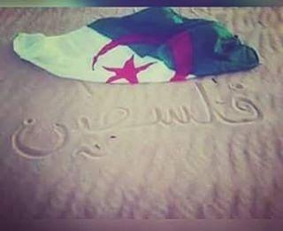 Toujours avc Palestine