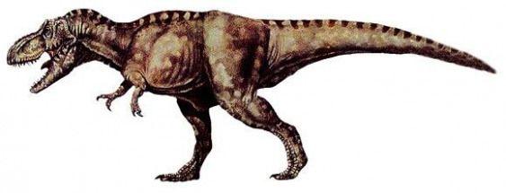 Tyrannosaurus rex #mammals #prehistoric #mammals #tyrannosaurusrex