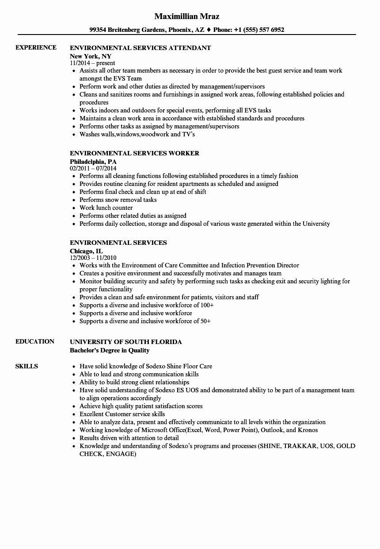 node js developer sample resume  best resume examples