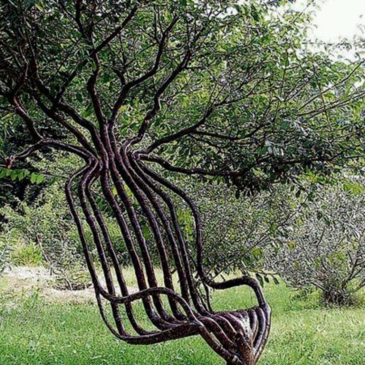 Beautiful chair... made from a living tree!