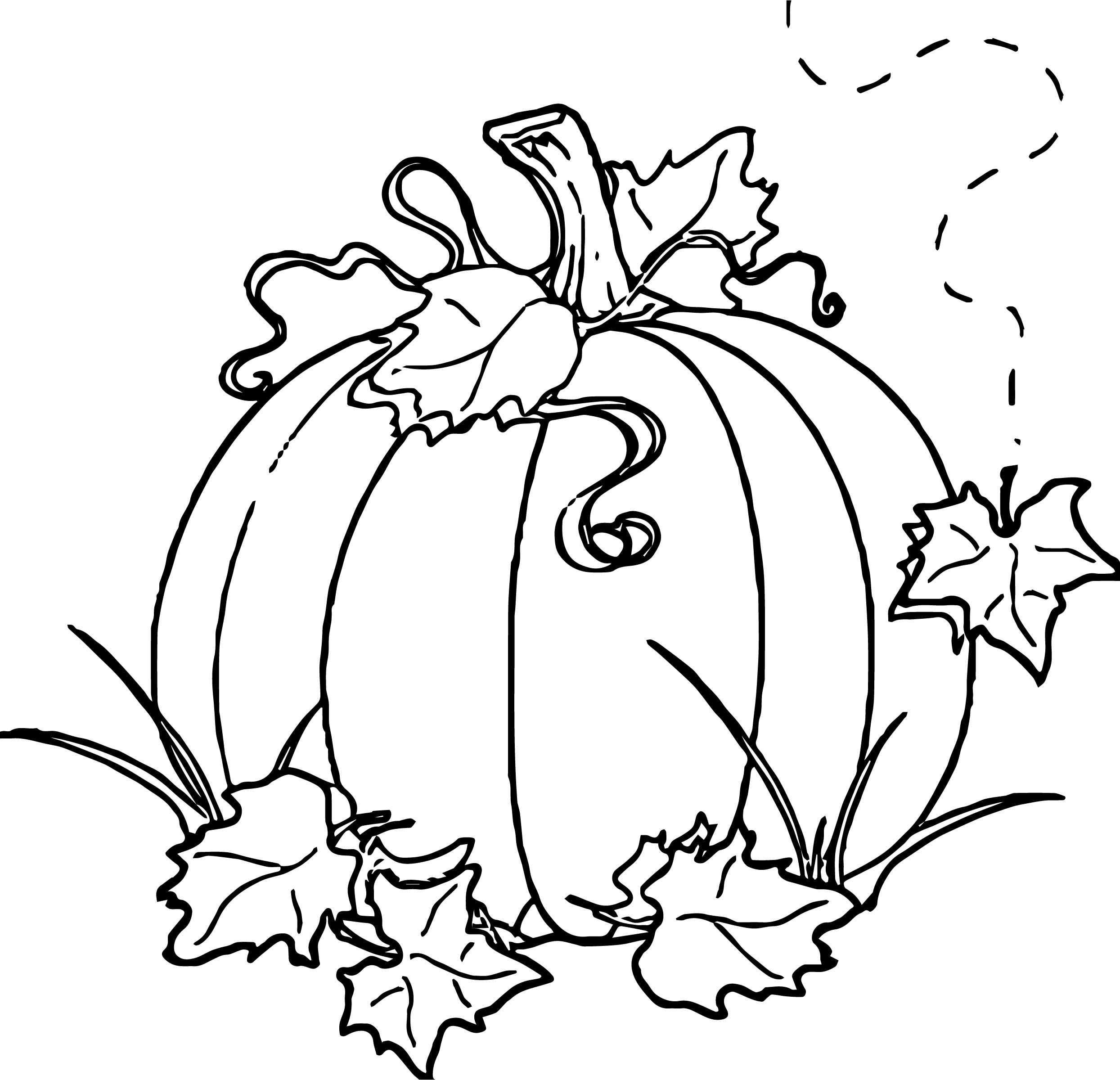 Awesome Free Autumn Pumpkin Coloring Page Pumpkin Coloring Pages Fall Coloring Pages Pumpkin Drawing