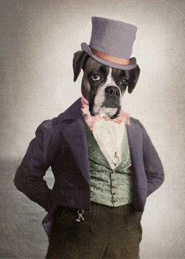 Apollo Boxer Dog Print Anthropomorphic Whimsical Dog Art