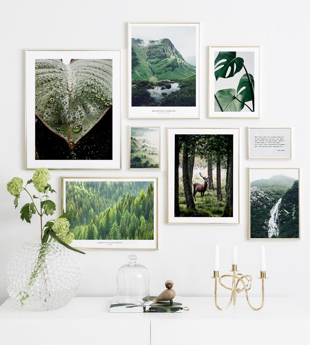 Hy Not Bring The Forest Inside From Lef Gallery Wall Inspiration Gallery Wall Inspiration Wall
