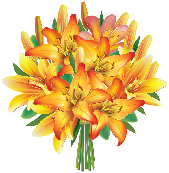 Yellow Lily Flower Clip Art