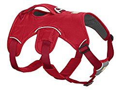 Best Escape Proof Dog Harness To Keep Escape Artist Dog From