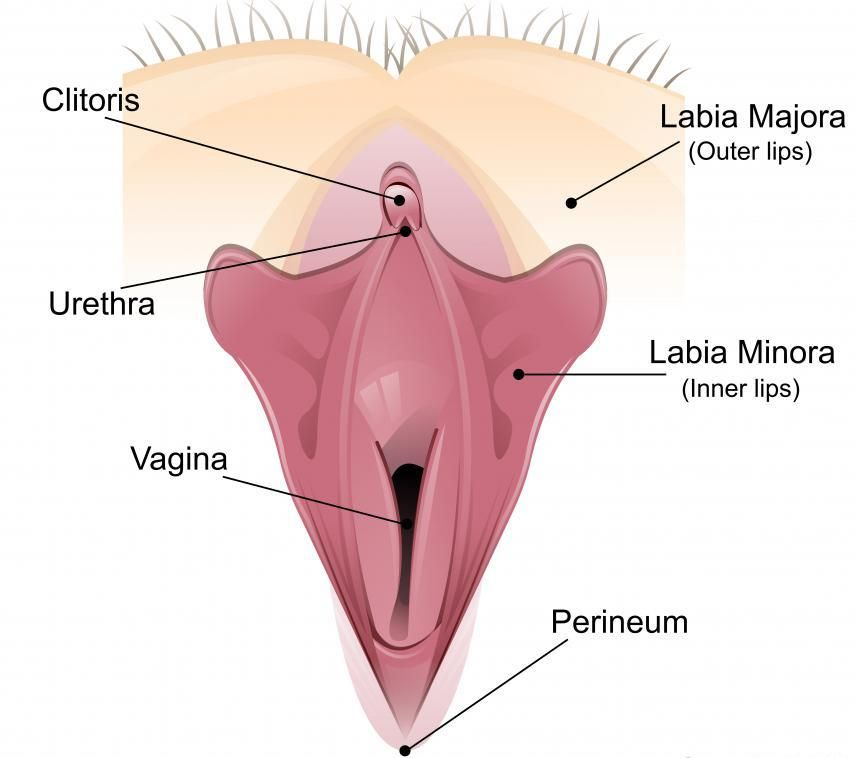 Vaginal Facts No One Told You About!