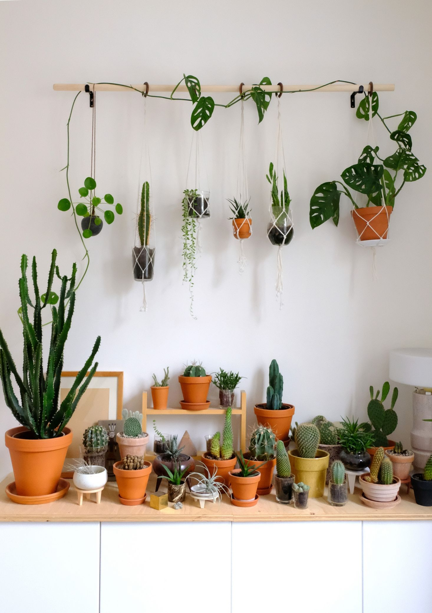 DIY hanging plant wall with macrame planters Indoor
