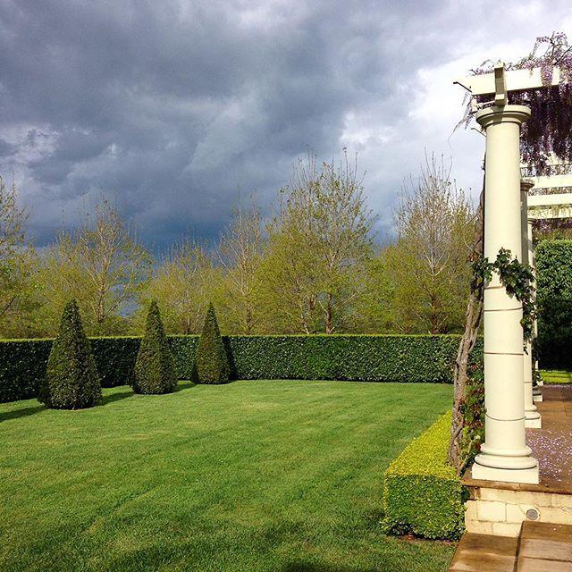 "@brabournefarm on Instagram: ""Sunshine after rain # ..."