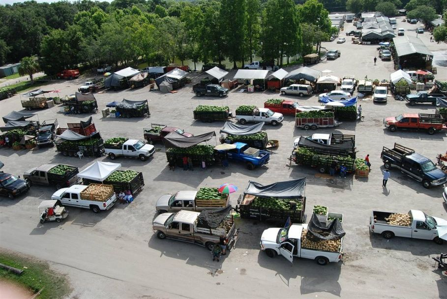 Plant City Farm And Flea Market In Plant City Florida Profile At Farmers Market Online Plant City Florida City Farm City