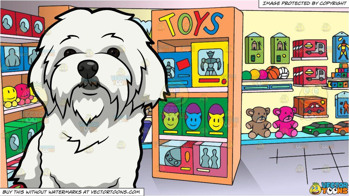 A Curiously Cute Maltese Dog And Inside A Toy Store Background