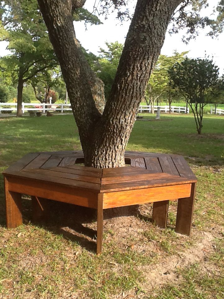 My Husband Made This Beautiful Bench Around The Oak Tree In Our Back Yard I Love It Bench Around Trees Landscape Trees Backyard Seating Area